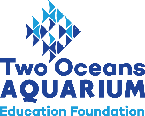 Two Oceans Aquarium Education Foundation